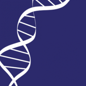 Genomic BRCs