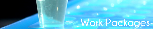 Banner WP v1